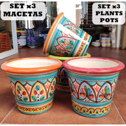 Set of 3 Plants Pot...
