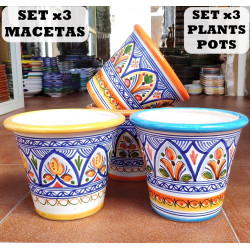 Set of 3 Plants Pots...